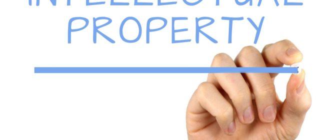 MEM Concessions LLC – Explanation of Intellectual Property Rights