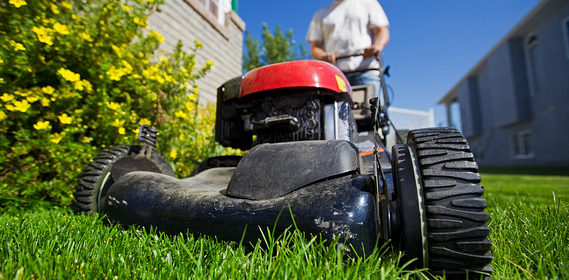 3 Tips For Starting A Small Lawn Care Business