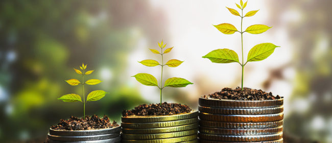 4 Ways To Grow Your Wealth in 2020